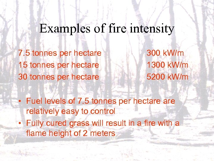 Examples of fire intensity 7. 5 tonnes per hectare 15 tonnes per hectare 300