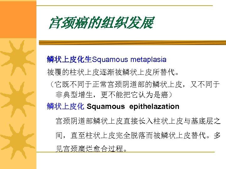 宫颈癌的组织发展 鳞状上皮化生Squamous metaplasia 被覆的柱状上皮逐渐被鳞状上皮所替代。 (它既不同于正常宫颈阴道部的鳞状上皮,又不同于 非典型增生,更不能把它认为是癌) 鳞状上皮化 Squamous epithelazation 宫颈阴道部鳞状上皮直接长入柱状上皮与基底层之 间,直至柱状上皮完全脱落而被鳞状上皮替代。多 见宫颈糜烂愈合过程。