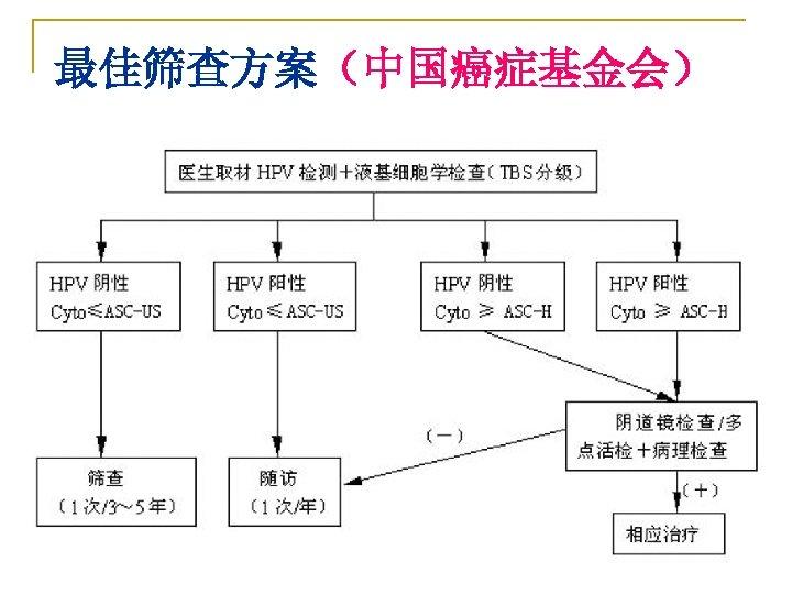 最佳筛查方案(中国癌症基金会)