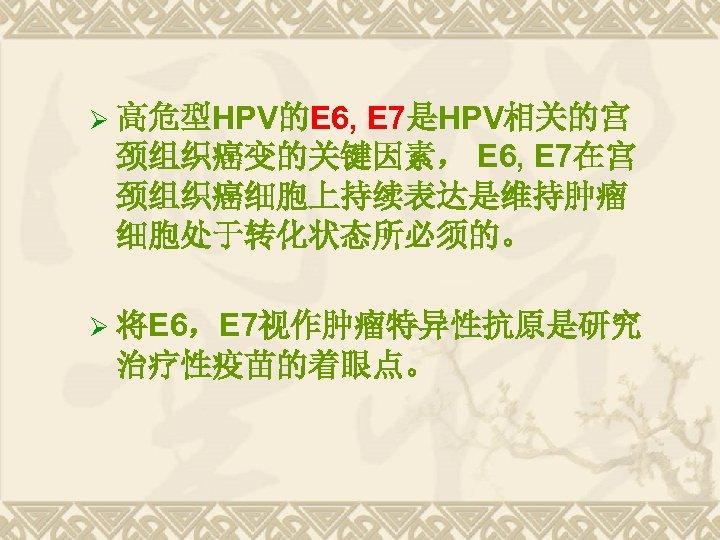 E 7是HPV相关的宫 颈组织癌变的关键因素, E 6, E 7在宫 颈组织癌细胞上持续表达是维持肿瘤 细胞处于转化状态所必须的。 Ø 高危型HPV的E 6, Ø 将E