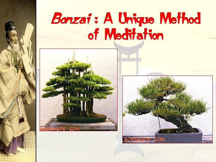 Bonzai : A Unique Method of Meditation