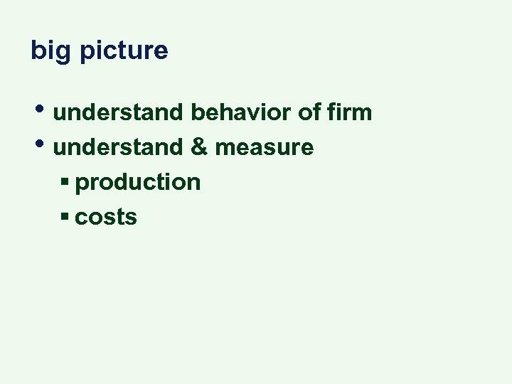 big picture • understand behavior of firm • understand & measure § production §