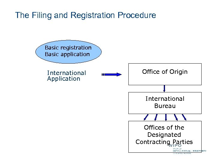 The Filing and Registration Procedure Basic registration Basic application International Application Office of Origin