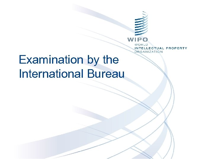 Examination by the International Bureau