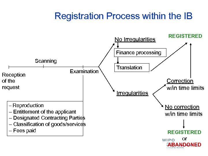 Registration Process within the IB No Irregularities REGISTERED Finance processing Scanning Reception of the