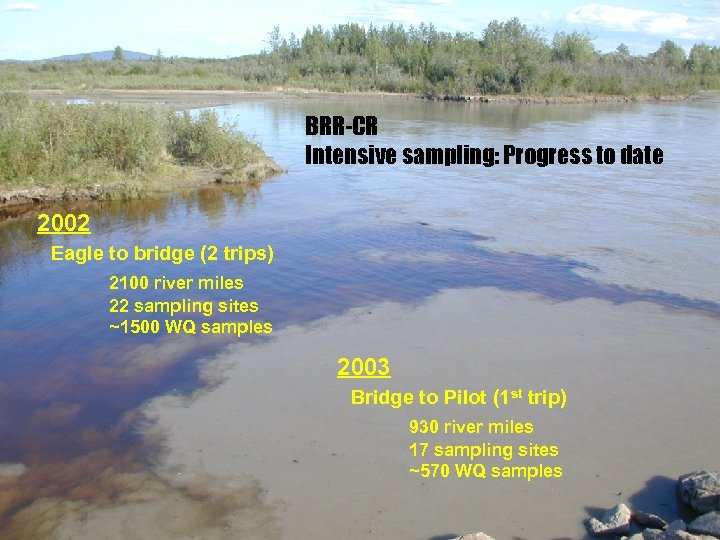 BRR-CR Intensive sampling: Progress to date 2002 Eagle to bridge (2 trips) 2100 river