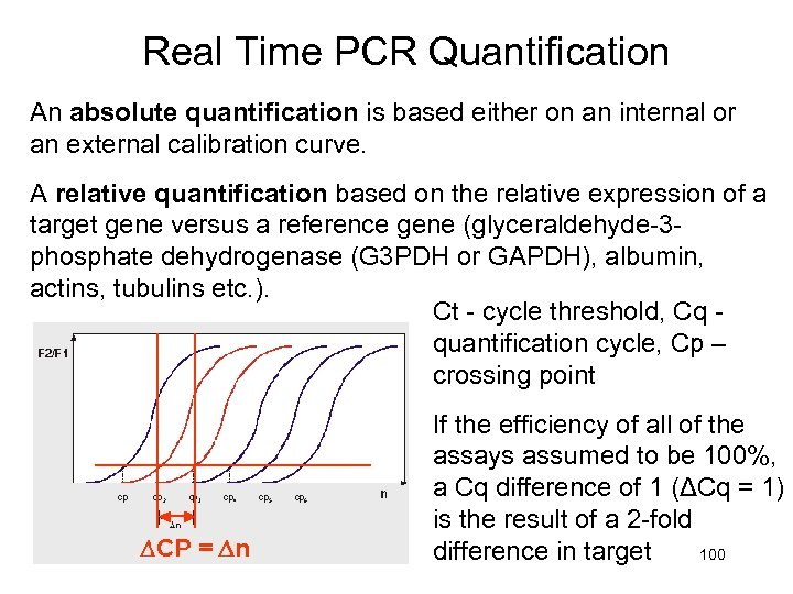 Real Time PCR Quantification An absolute quantification is based either on an internal or