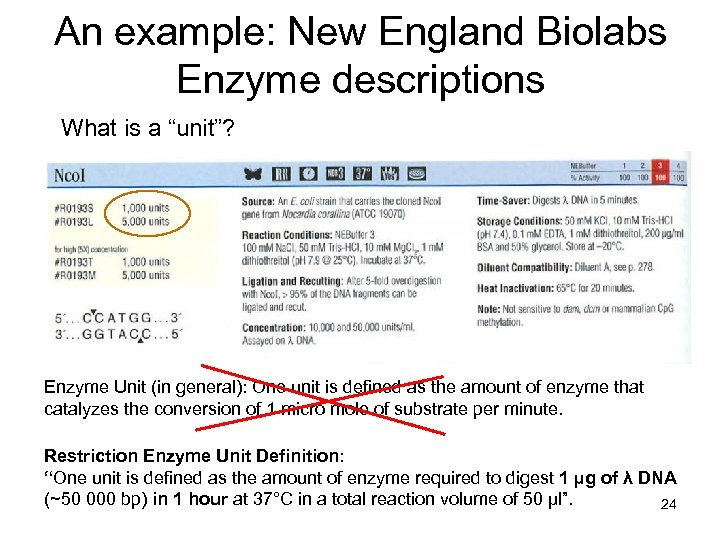 """An example: New England Biolabs Enzyme descriptions What is a """"unit""""? Enzyme Unit (in"""