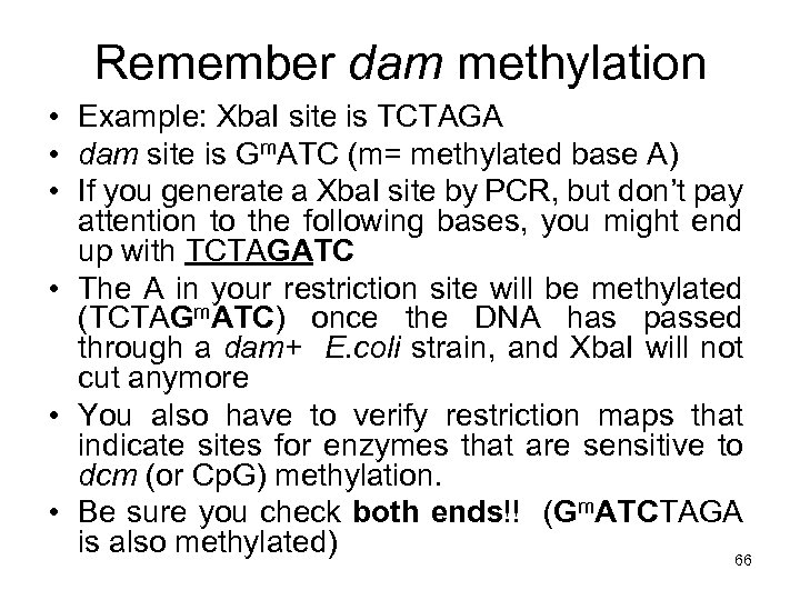 Remember dam methylation • Example: Xba. I site is TCTAGA • dam site is