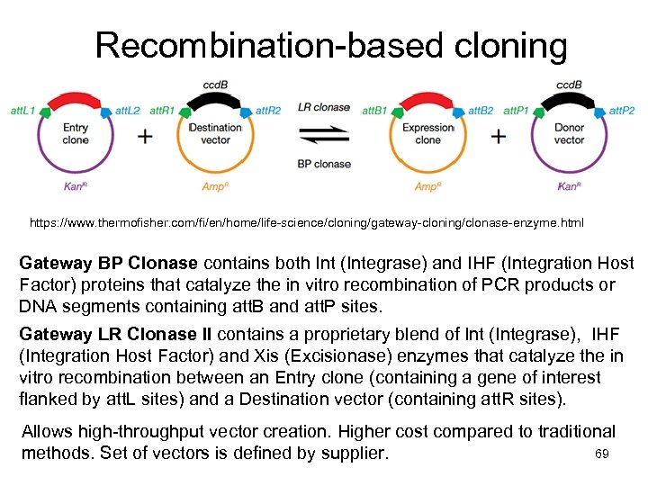 Recombination-based cloning https: //www. thermofisher. com/fi/en/home/life-science/cloning/gateway-cloning/clonase-enzyme. html Gateway BP Clonase contains both Int (Integrase)