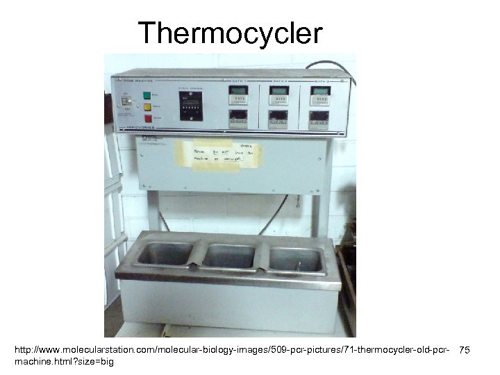 Thermocycler http: //www. molecularstation. com/molecular-biology-images/509 -pcr-pictures/71 -thermocycler-old-pcr- 75 machine. html? size=big