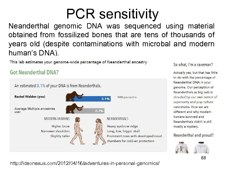 PCR sensitivity Neanderthal genomic DNA was sequenced using material obtained from fossilized bones that