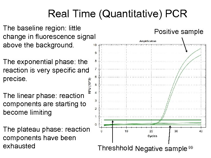 Real Time (Quantitative) PCR The baseline region: little change in fluorescence signal above the