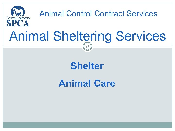 Animal Control Contract Services Animal Sheltering Services 13 Shelter Animal Care