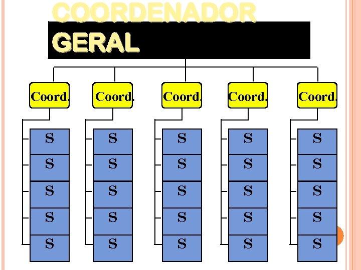 COORDENADOR GERAL Coord. S S S S S S S