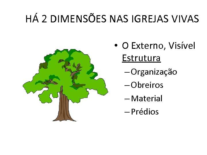 HÁ 2 DIMENSÕES NAS IGREJAS VIVAS • O Externo, Visível Estrutura – Organização –