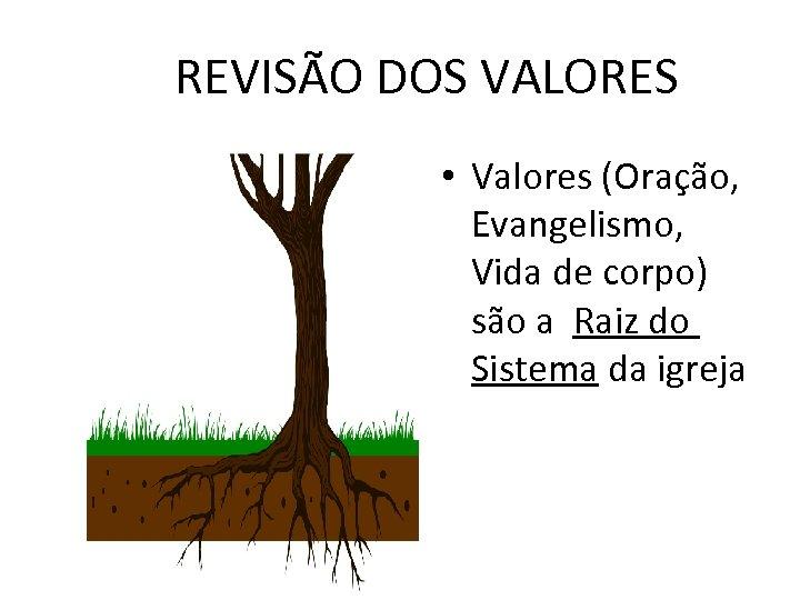 REVISÃO DOS VALORES • Valores (Oração, Evangelismo, Vida de corpo) são a Raiz do