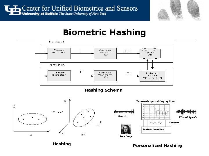 Biometric Hashing Schema Hashing Personalized Hashing