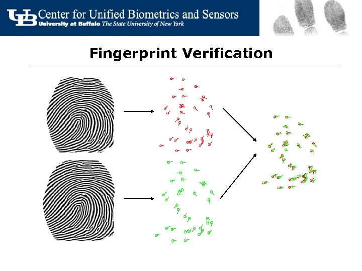 Fingerprint Verification