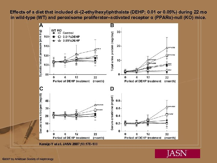 Effects of a diet that included di-(2 -ethylhexyl)phthalate (DEHP; 0. 01 or 0. 05%)