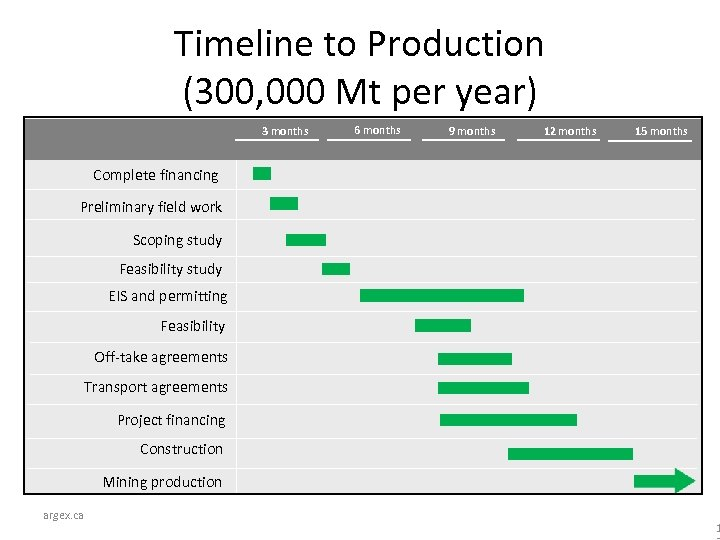 Timeline to Production (300, 000 Mt per year) 3 months 6 months 9 months