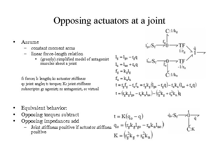 Opposing actuators at a joint • Assume – constant moment arms – linear force-length