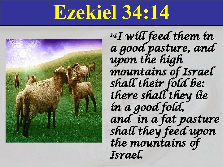 Ezekiel 34: 14 14 I will feed them in a good pasture, and upon