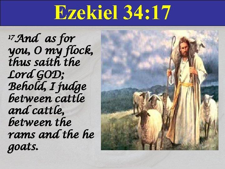 Ezekiel 34: 17 17 And as for you, O my flock, thus saith the