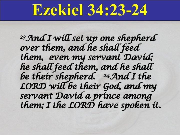 Ezekiel 34: 23 -24 23 And I will set up one shepherd over them,