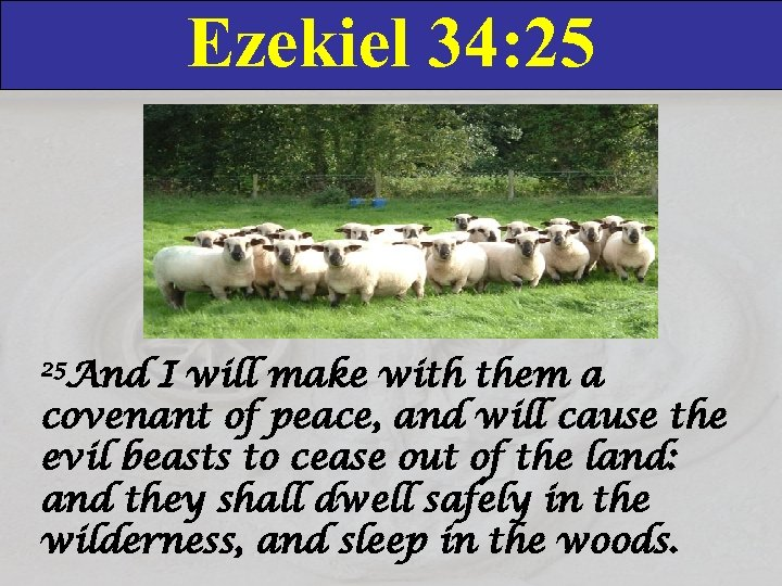 Ezekiel 34: 25 25 And I will make with them a covenant of peace,