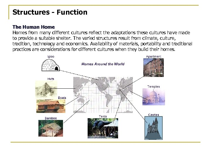 Structures - Function The Human Homes from many different cultures reflect the adaptations these