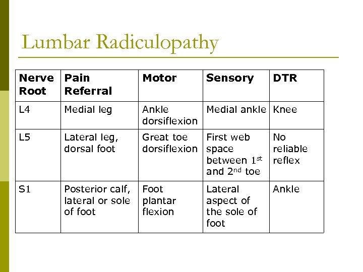 Lumbar Radiculopathy Nerve Pain Root Referral Motor Sensory L 4 Medial leg Ankle Medial