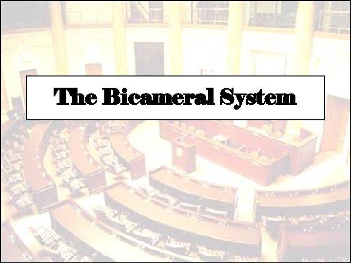 The Bicameral System