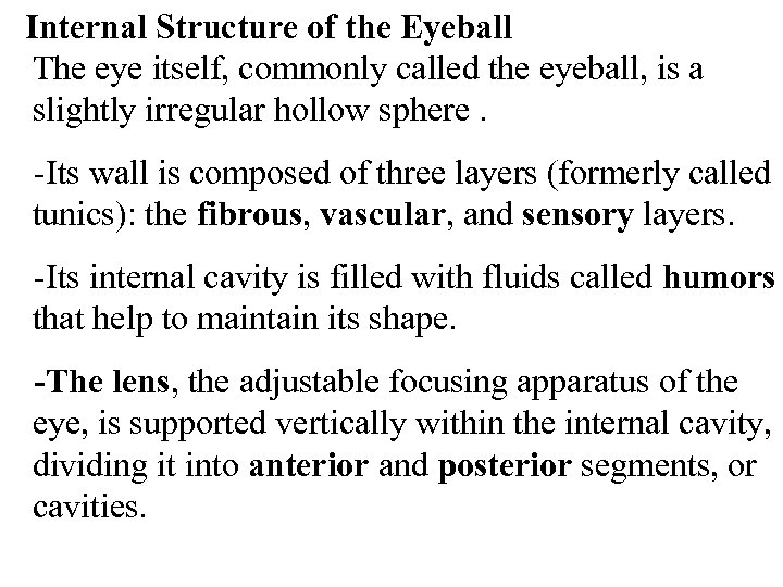 Internal Structure of the Eyeball The eye itself, commonly called the eyeball, is a