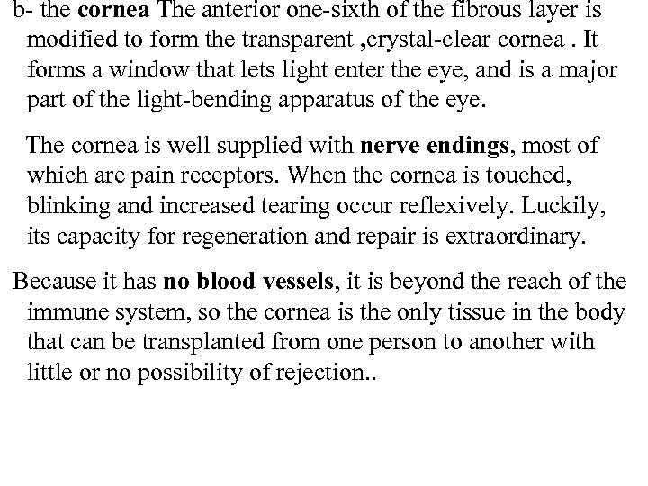 b- the cornea The anterior one-sixth of the fibrous layer is modified to