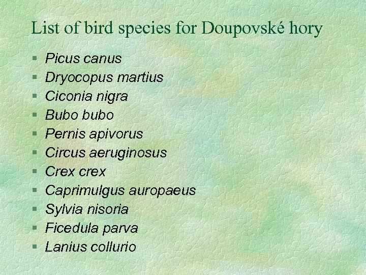 List of bird species for Doupovské hory § § § Picus canus Dryocopus martius
