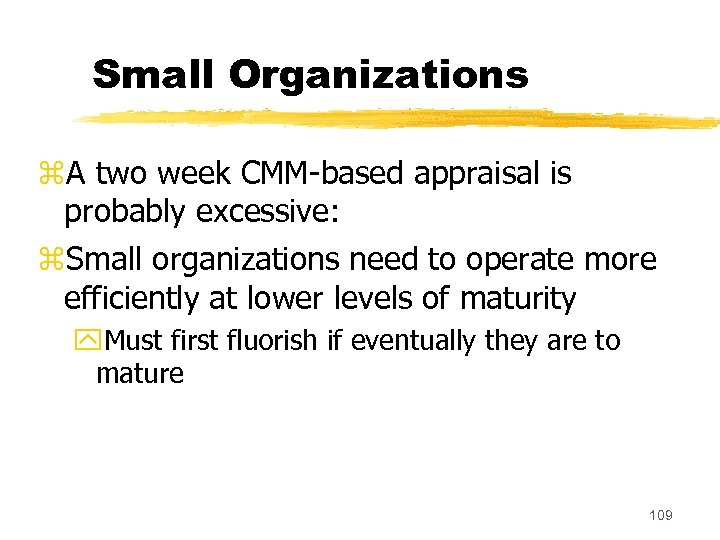 Small Organizations z. A two week CMM-based appraisal is probably excessive: z. Small organizations