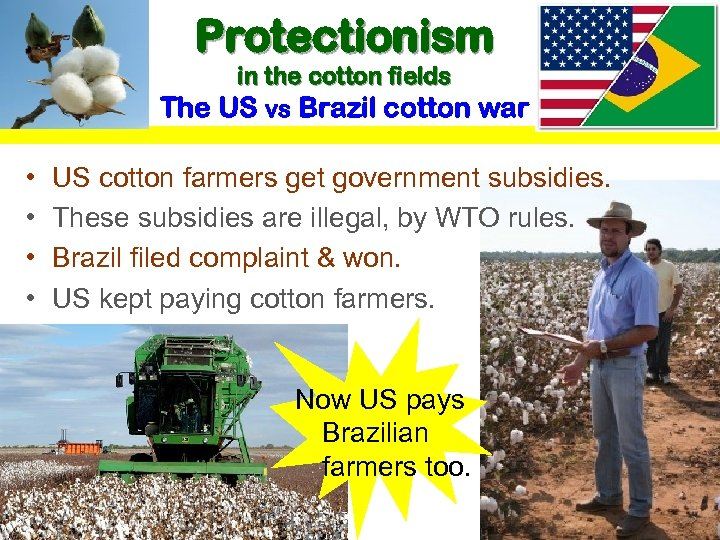 • • Protectionism in the cotton fields The US vs Brazil cotton war