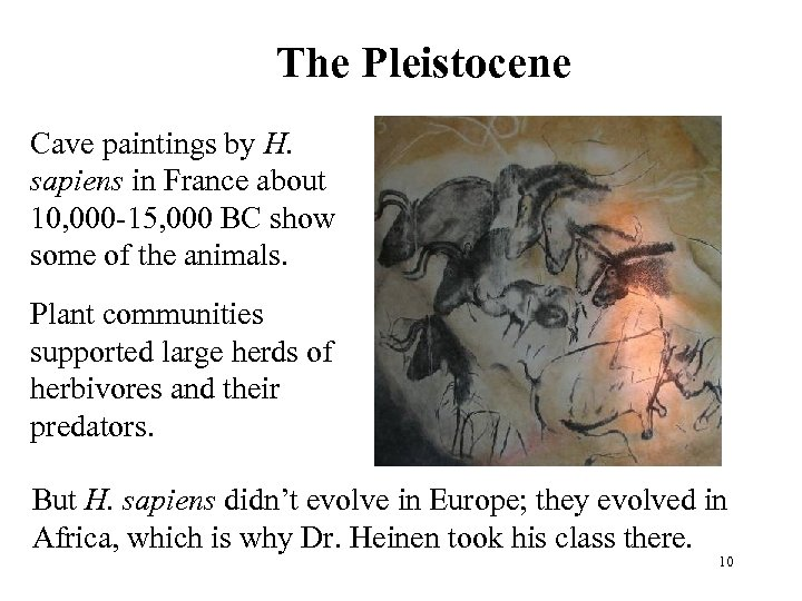 The Pleistocene Cave paintings by H. sapiens in France about 10, 000 -15, 000
