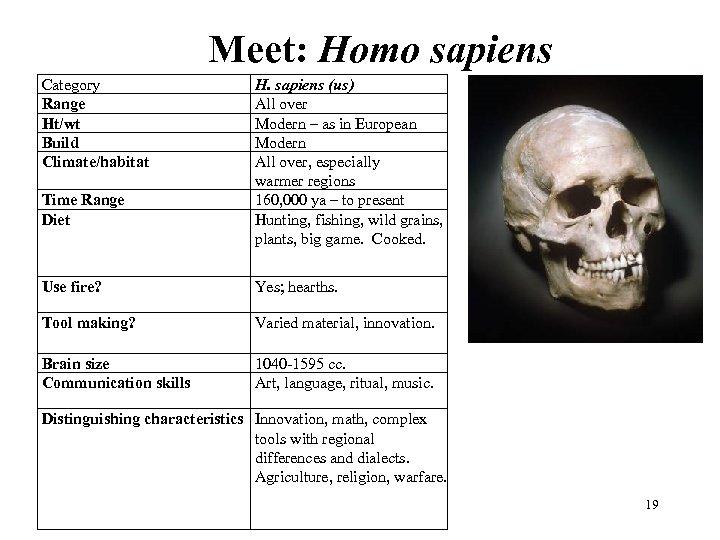 Meet: Homo sapiens Category Range Ht/wt Build Climate/habitat Time Range Diet H. sapiens (us)