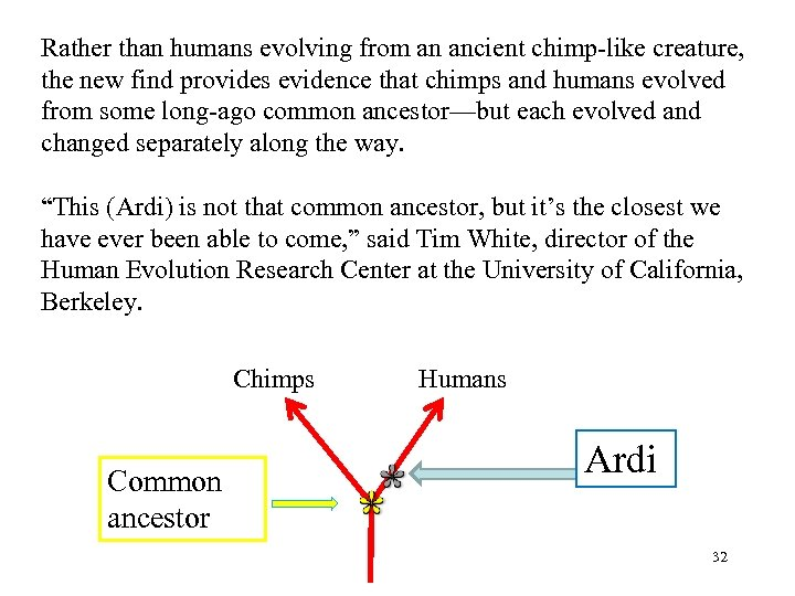 Rather than humans evolving from an ancient chimp-like creature, the new find provides evidence