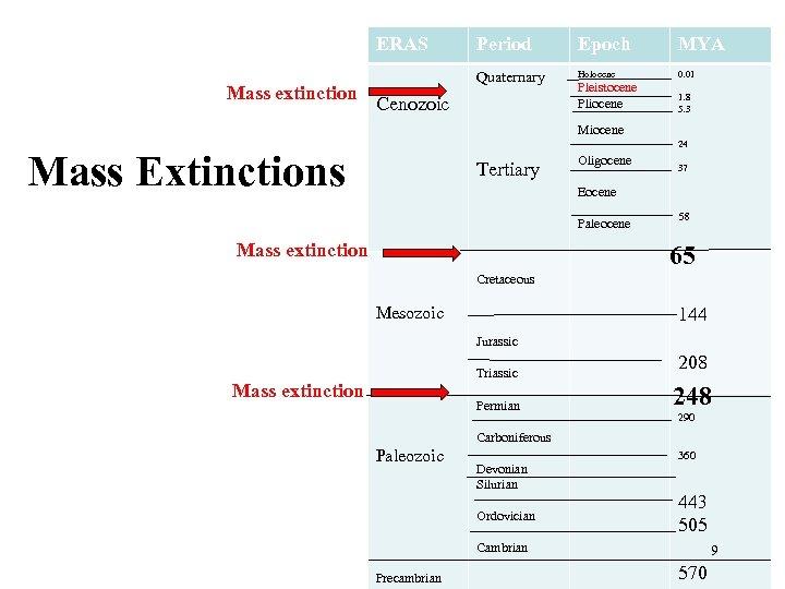 ERAS Mass extinction Period Epoch MYA Quaternary Holocene 0. 01 Pleistocene Pliocene 1. 8