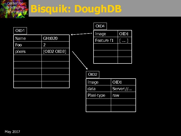 Center for Bioimaging Informatics Bisquik: Dough. DB OID 4 OID 1 Name GH 1020