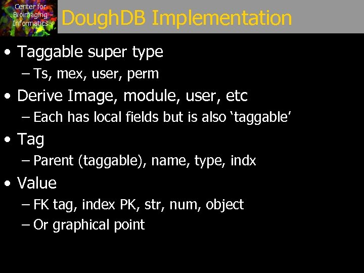 Center for Bioimaging Informatics Dough. DB Implementation • Taggable super type – Ts, mex,
