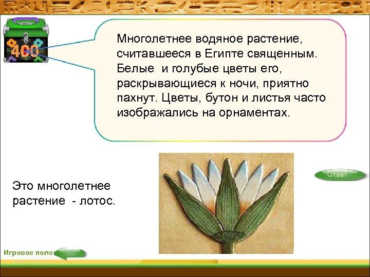 400 Многолетнее водяное растение, считавшееся в Египте священным. Белые и голубые цветы его, раскрывающиеся