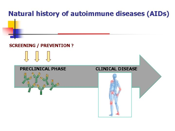 Natural history of autoimmune diseases (AIDs) SCREENING / PREVENTION ? PRECLINICAL PHASE CLINICAL DISEASE