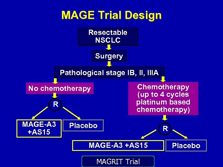 MAGE Trial Design Resectable NSCLC Surgery Pathological stage IB, IIIA Chemotherapy (up to 4
