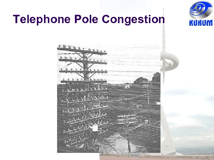 Telephone Pole Congestion