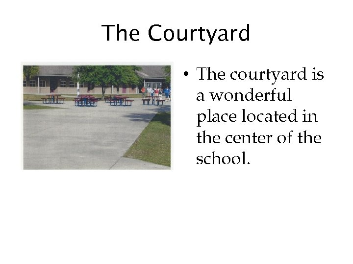 The Courtyard • The courtyard is a wonderful place located in the center of