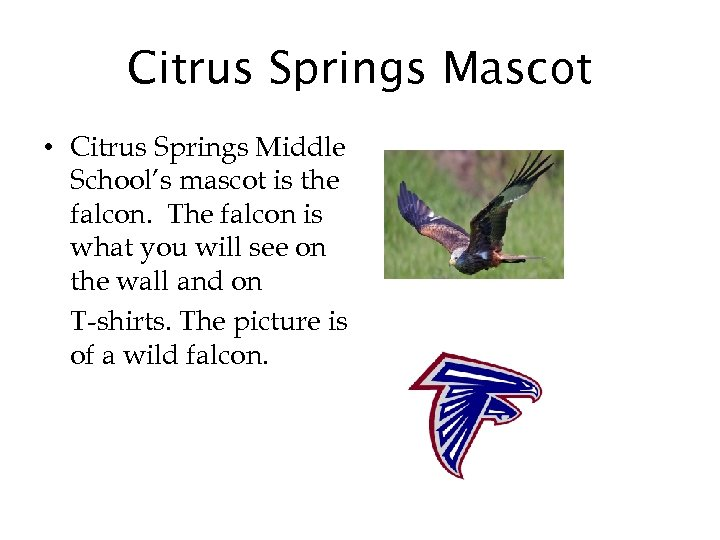 Citrus Springs Mascot • Citrus Springs Middle School's mascot is the falcon. The falcon